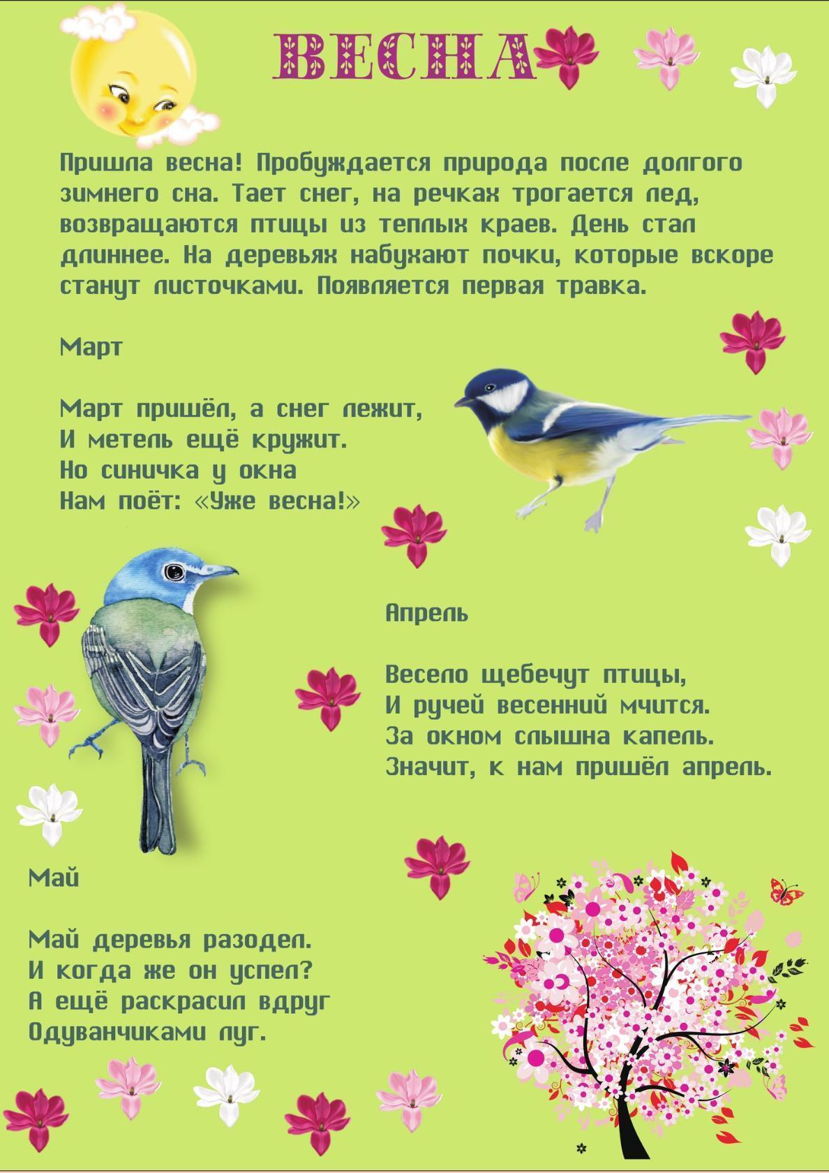 Весна и птицы стихи