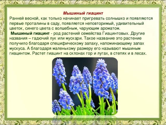 растения ставропольский край фото описание