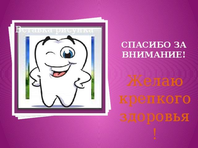 картинки стоматологические спасибо за внимание памяти