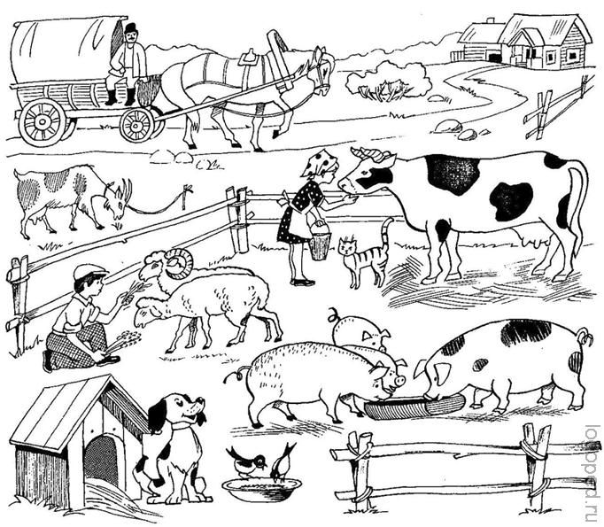 колено, картинки задания детям по теме домашние животные означает