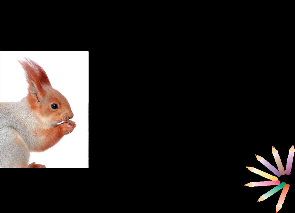 имитация вопросы на смекалку по картинкам санкт-петербурге