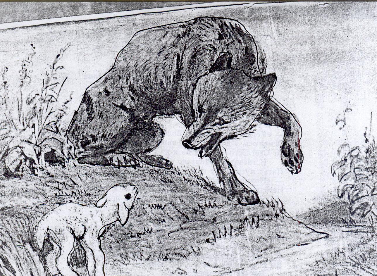 узнать, картинки как нарисовать волка и ягненка поверхность раковин поможет