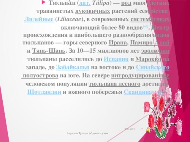 Тюльпа́н( лат.  Túlipa )— род многолетних травянистых луковичных растений семейства Лилейные ( Liliaceae ), в современных систематиках включающий более 80 видов [⇨] . Центр происхождения и наибольшего разнообразия видов тюльпанов— горы северного Ирана , Памиро-Алай и Тянь-Шань . За 10—15 миллионов лет эволюции тюльпаны расселились до Испании и Марокко на западе, до Забайкалья на востоке и до Синайского полуострова на юге. На севере интродуцированные человеком популяции тюльпана лесного достигли Шотландии и южного побережья Скандинавии [⇨]