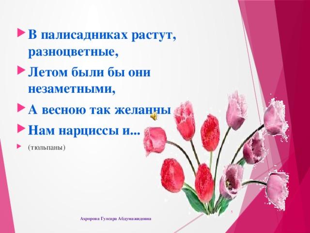 В палисадниках растут, разноцветные, Летом были бы они незаметными, А весною так желанны Нам нарциссы и... (тюльпаны)