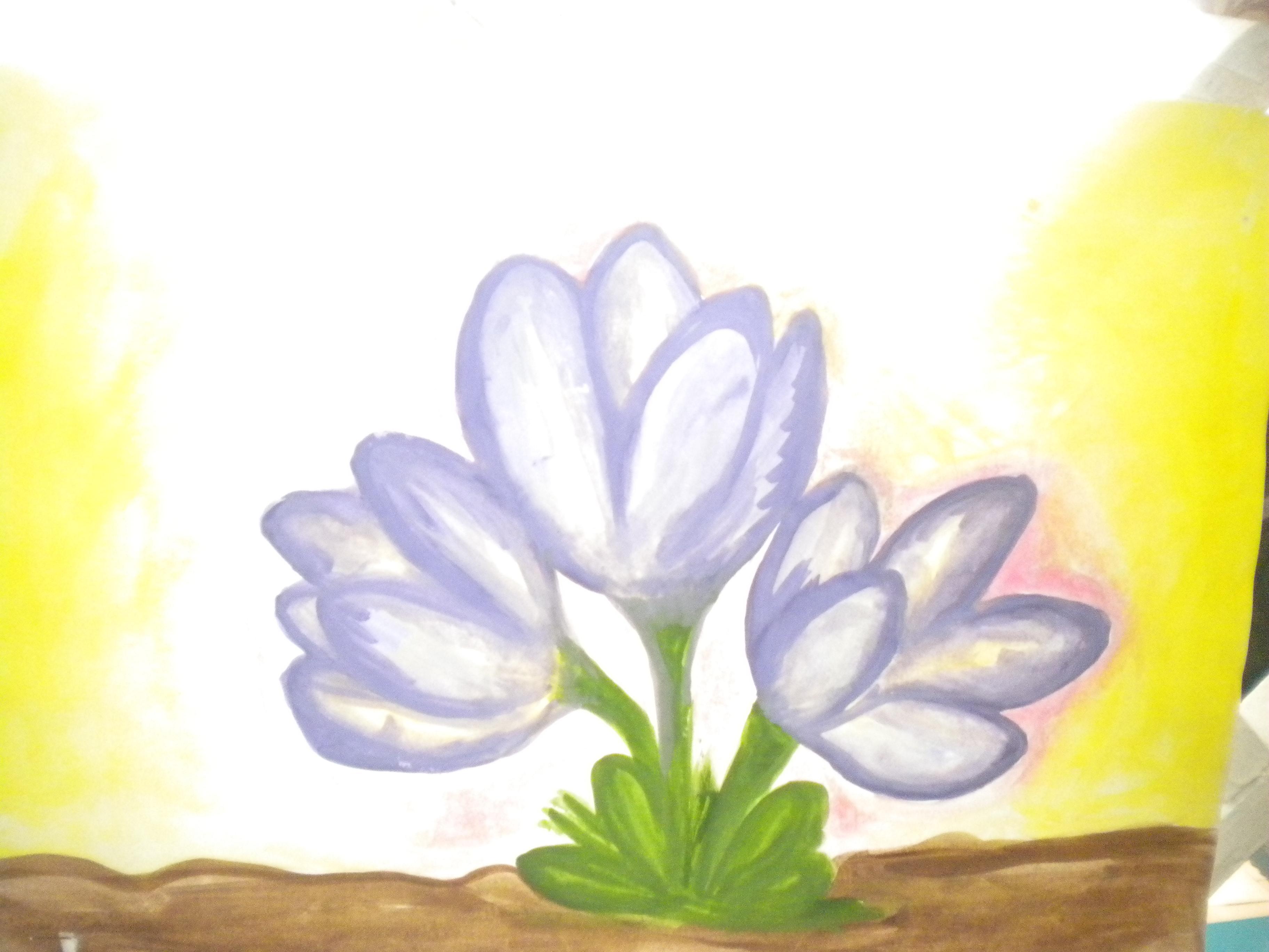 Рисунки спирит душа прерий все