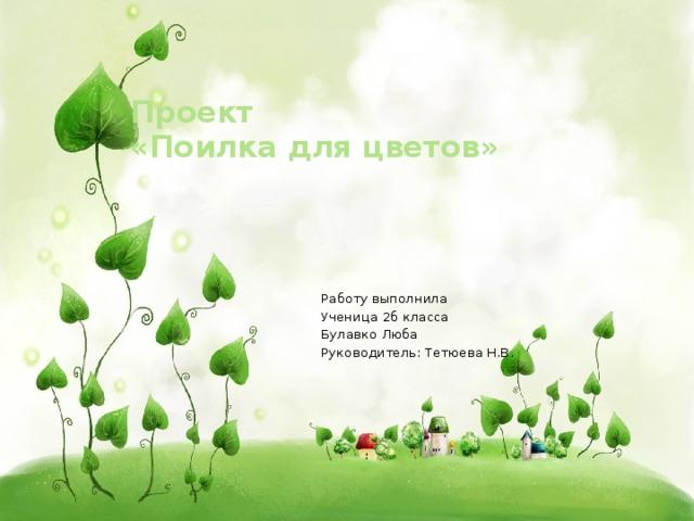 Проект  «Поилка для цветов»   Работу выполнила Ученица 2б класса Булавко Люба Руководитель: Тетюева Н.В.