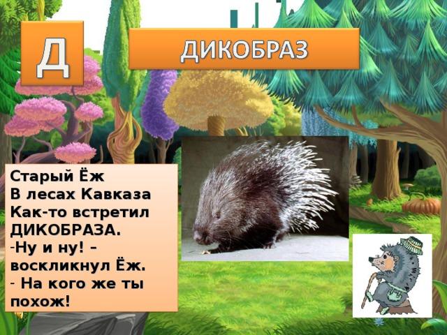 Старый Ёж В лесах Кавказа Как-то встретил ДИКОБРАЗА. Ну и ну! –воскликнул Ёж.  На кого же ты похож!