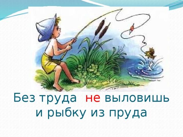 Картинка без труда не вынешь рыбку из пруда картинка