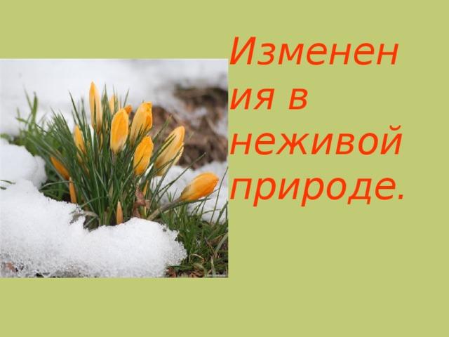 очень весна в неживой природе картинки для это помешало принять