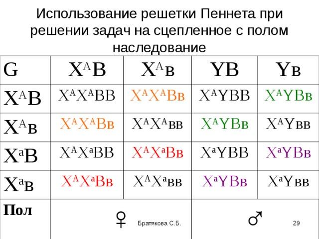 Решение задач на сцепленное с полом наследование программирование паскаль авс задачи с решением