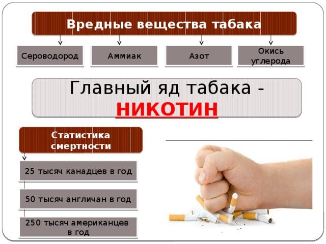 Вредные вещества табака Аммиак Азот Окись углерода Сероводород Главный яд табака - НИКОТИН Статистика смертности 25 тысяч канадцев в год 50 тысяч англичан в год 250 тысяч американцев в год
