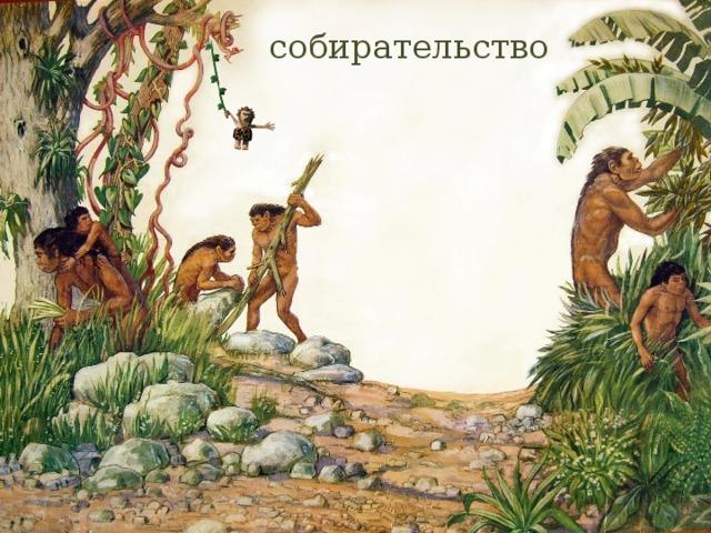 тому картинки древние люди собирают растения как