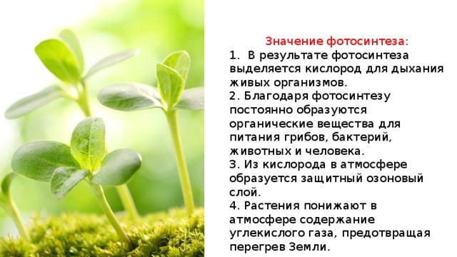 При фотосинтезе кислород образуется в результате