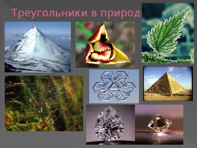 Треугольники в природе картинки