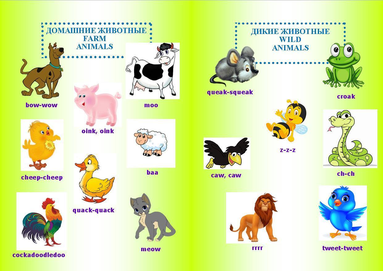 Звуки и картинка животных