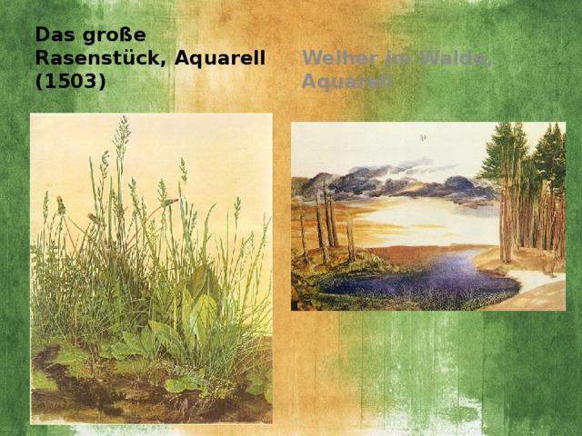 Das große Rasenstück, Aquarell (1503) Weiher im Walde, Aquarell