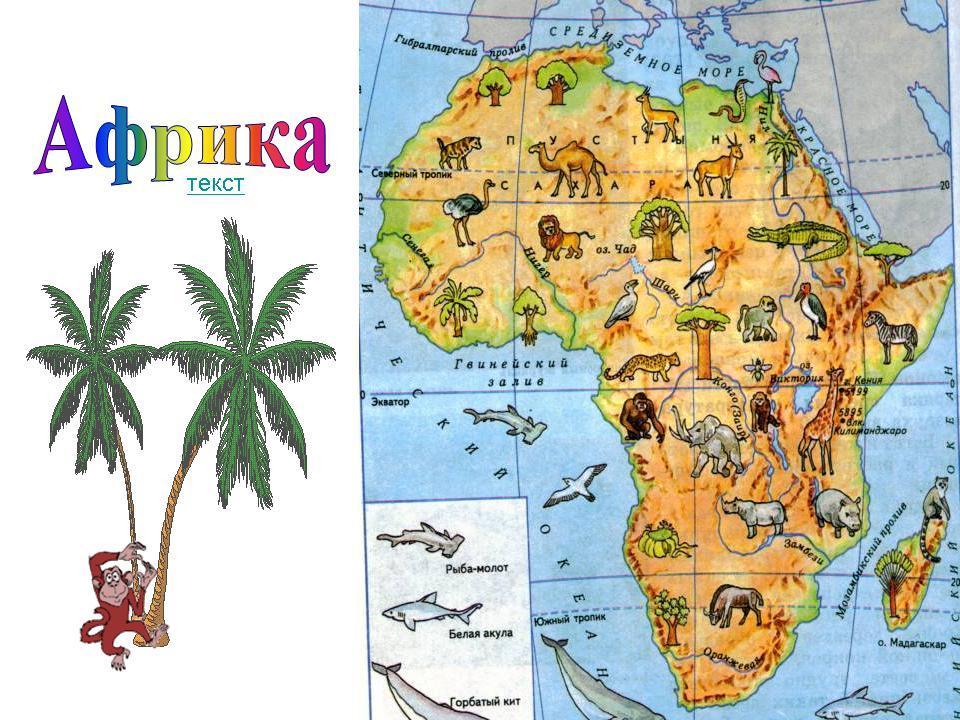 Днем, африка в картинках для 2 класса