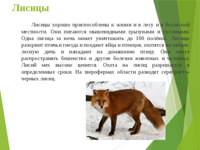 животные курской области фото и описание модных зимних цветов