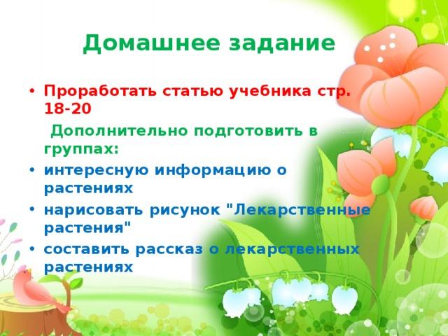 Домашнее задание Проработать статью учебника стр. 18-20  Дополнительно подготовить в группах: интересную информацию о растениях нарисовать рисунок