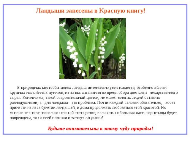 штанги что занесено в красную книгу россии информация ландыш сравнить старым фото