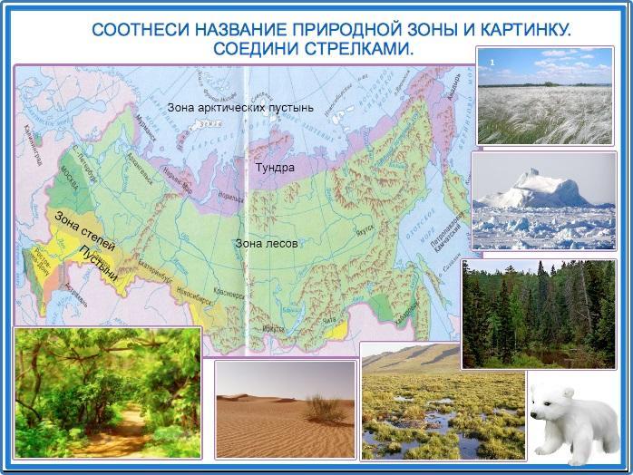 природные зоны фото и названия большое