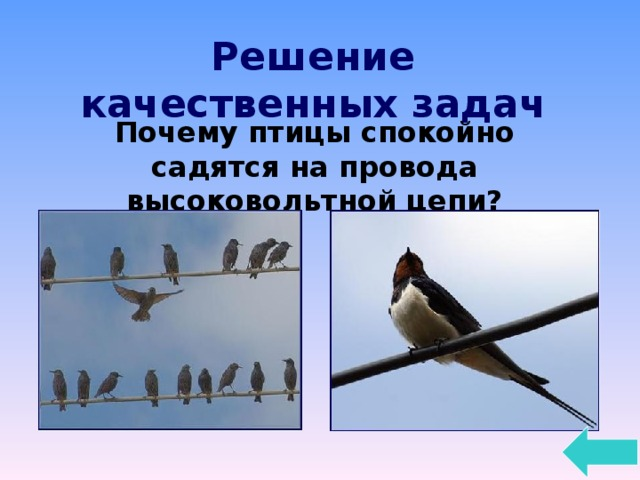 Решение качественных задач Почему птицы спокойно садятся на провода высоковольтной цепи?