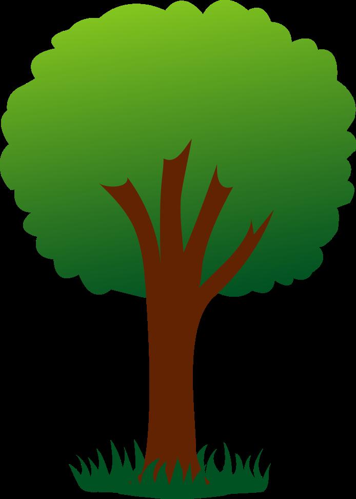 Дерево в картинках для детей