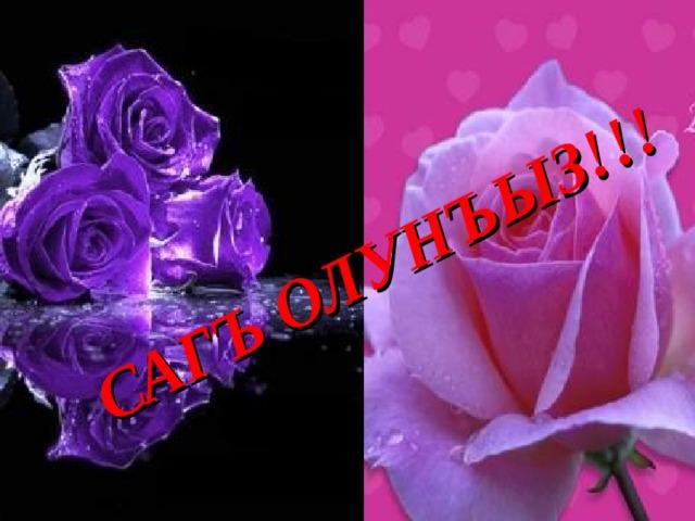Открытка на крымскотатарском языке, собак кошек
