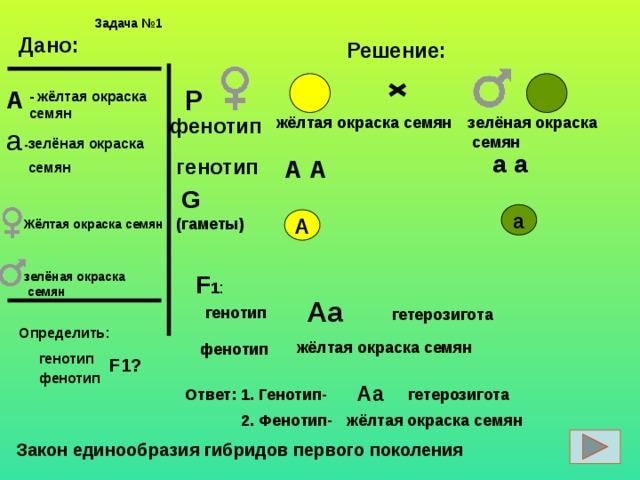 Задачи 1 2 закон менделя с решением геометрическое решение текстовых задач