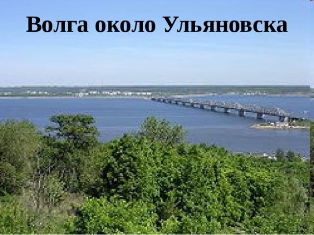 Волга около Ульяновска
