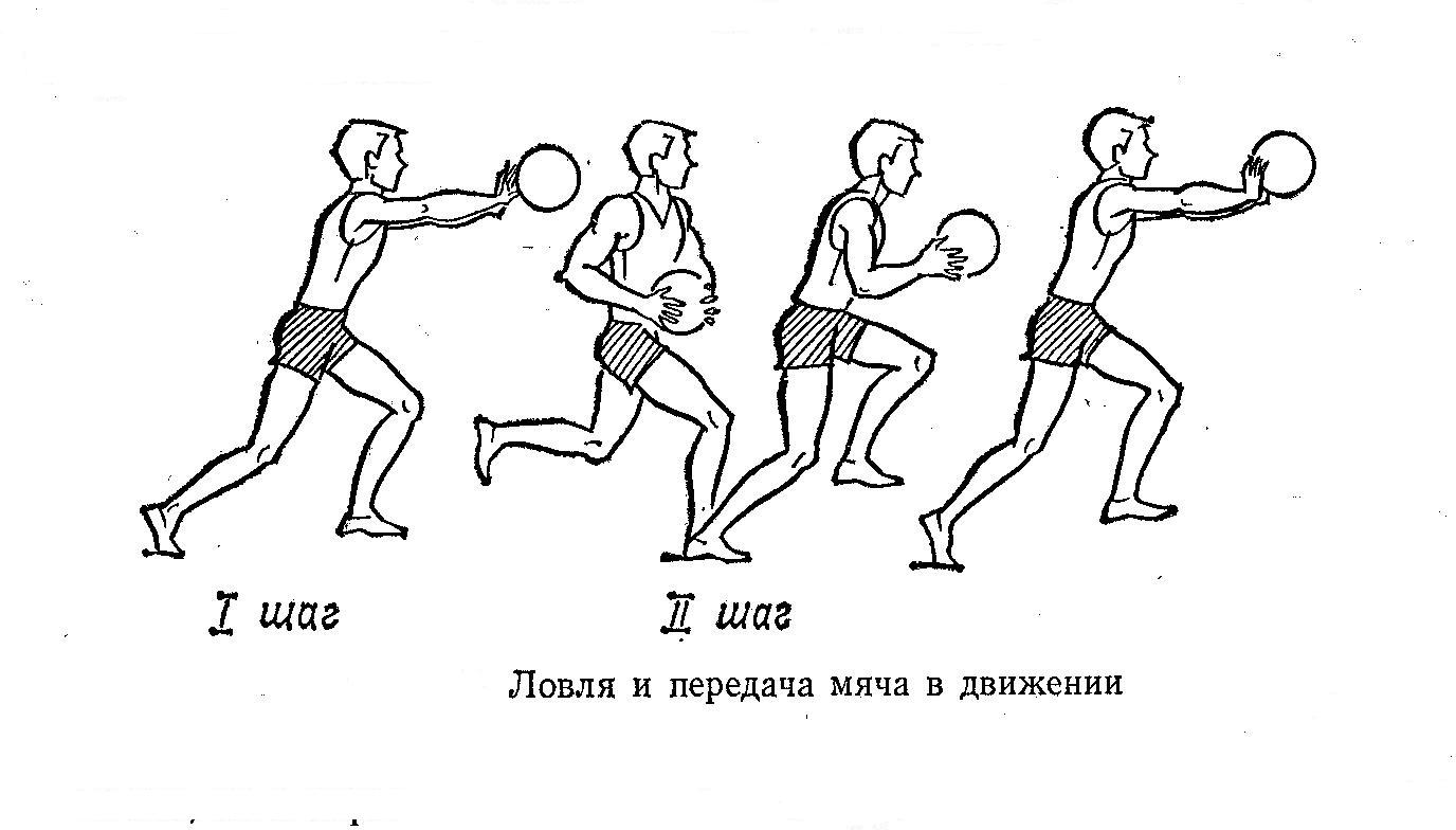 техника передачи мяча в баскетболе картинки него начальства розовые