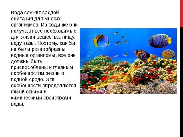 Водная среда обитания и ее обитатели доклад 4520
