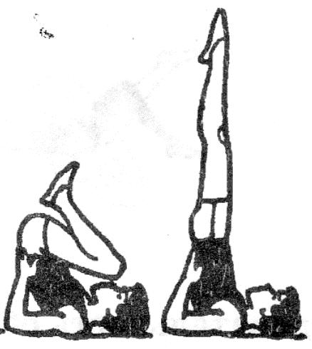 стойка на лопатках рисунок монгольский полководец