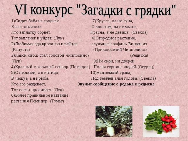 пример поздравление с овощами на день рождения про редиску также приготовили
