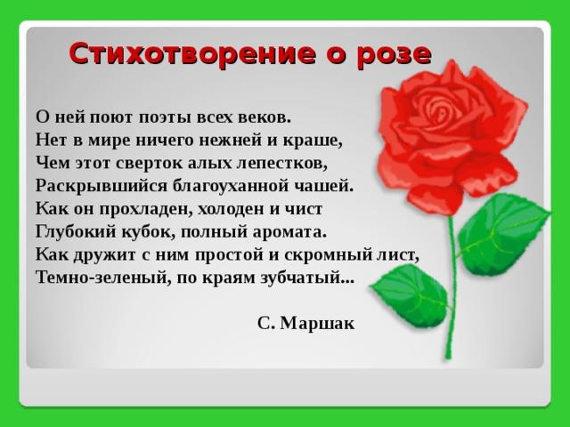 стихи к каждой розе дамский