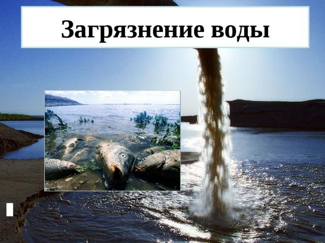 Доклад загрязнение воды по обж 5776