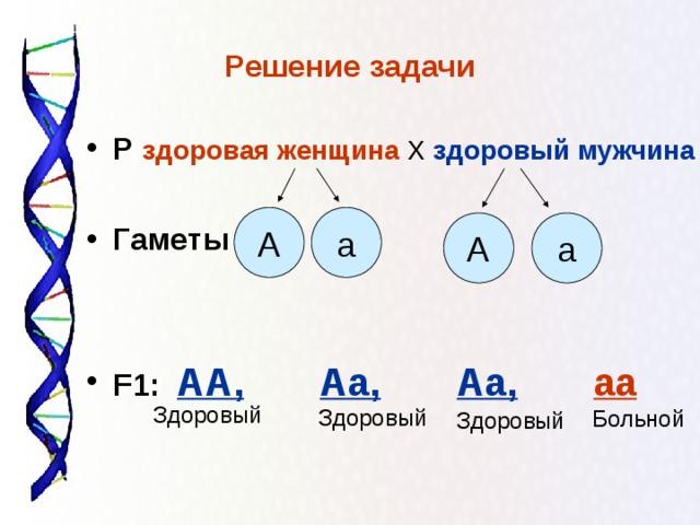 Решение задачи Р  здоровая женщина  Х здоровый мужчина  Гаметы    F1 :  АА,  Аа,  Аа,  аа  а А А а Здоровый Здоровый Больной Здоровый