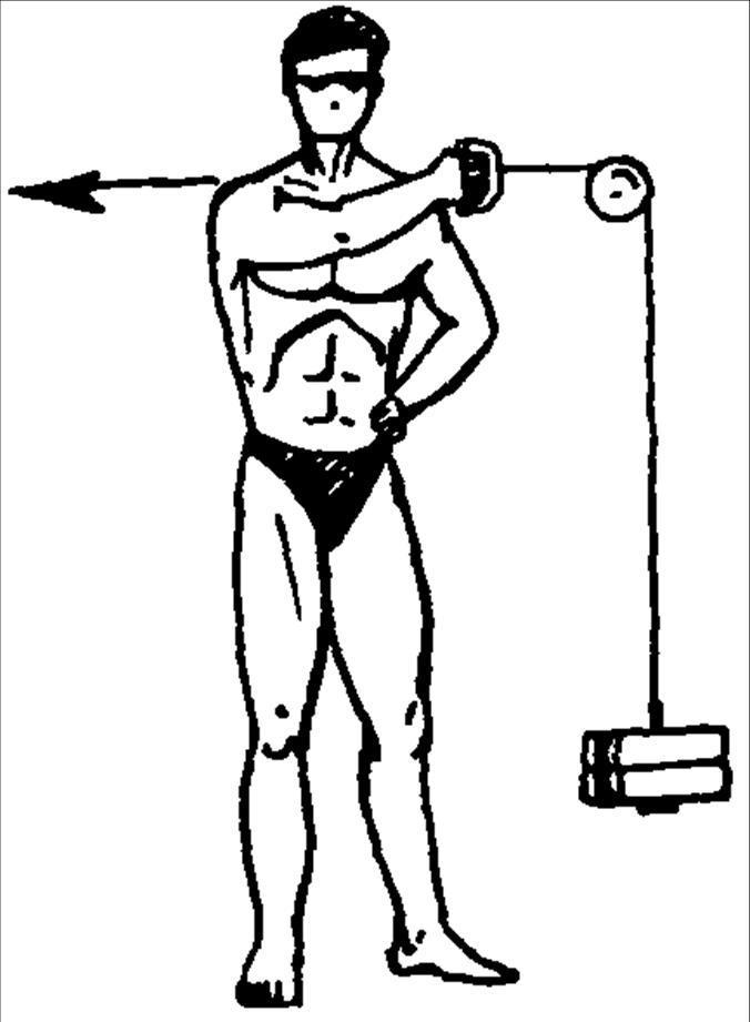 этих шпрот комплекс упражнений в картинках для мышц плеча доктор валерия наносит