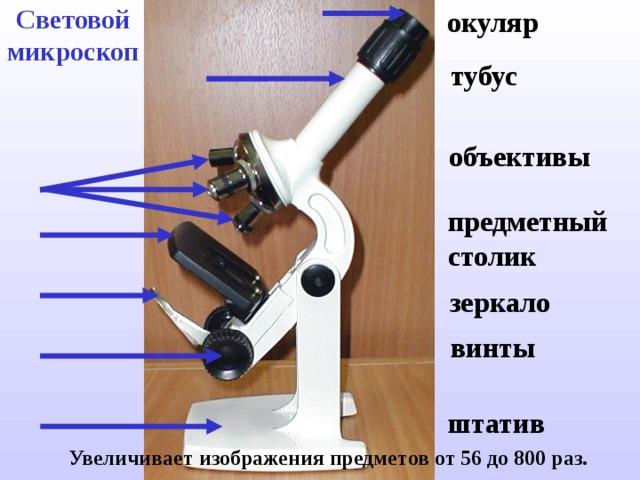 Световой микроскоп окуляр тубус объективы предметный столик зеркало винты штатив  Увеличивает  изображения предметов от 56 до 800 раз.