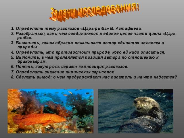 1. Определить тему рассказов «Царь-рыба» В. Астафьева. 2.  Разобраться, как и чем соединяются в единое целое части цикла «Царь-рыба». 3. Выяснить, каким образом показывает автор единство человека и природы. 4. Определить, кто противостоит природе, кого ей надо опасаться. 5. Выяснить, в чем проявляется позиция автора по отношению к браконьерам. 6. Понять, какую роль играет композиция рассказов. 7. Определить значение лирических зарисовок. 8. Сделать вывод: о чем предупреждает нас писатель и на что надеется?