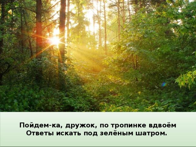 Пойдем-ка, дружок, по тропинке вдвоём Ответы искать под зелёным шатром.  Другое – пчелою забралось в цветок, Когда ты идёшь по тропинке лесной, Сидит «ОТЧЕГО» на зелёном листке, Вопросы тебя обгоняют гурьбой. А третье – лягушкою скок в ручеёк. «КУДА» полетело верхом на жуке, Одно «ПОЧЕМУ» меж деревьями мчится, «ЧТО» мышкой шныряет под листьями в норах, «ЗАЧЕМ» вслед за ящеркой влезло на пень… Летит по пятам за неведомой птицей. «КТО» ищет в кустах притаившийся шорох, Вопрос за вопросом, и так – целый день.