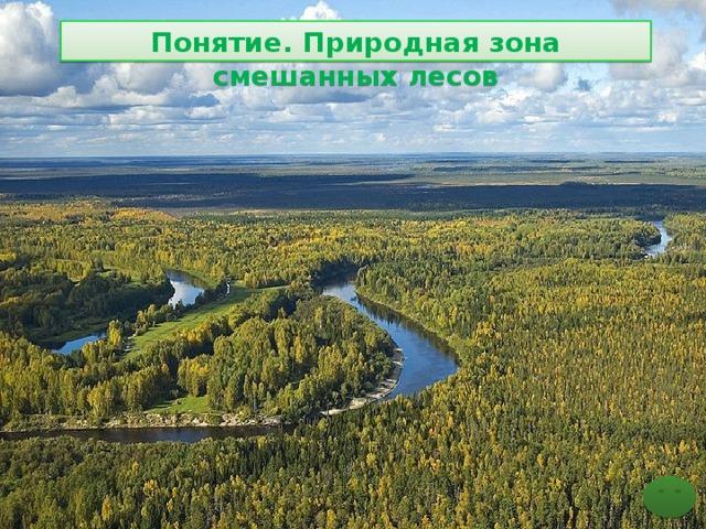 Понятие. Природная зона смешанных лесов