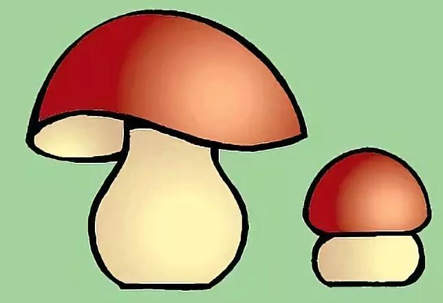 Картинка большого и маленького гриба