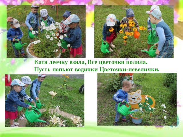 Катя леечку взяла, Все цветочки полила.  Пусть попьют водички Цветочки-невелички. Поливаем цветы