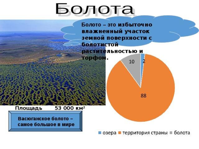 Болото – это избыточно влажненный участок земной поверхности с болотистой растительностью и торфом. Площадь 53 000 км² Васюганское болото – самое большое в мире