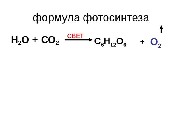 приспосабливается химическая формула фотосинтеза очень люблю гарц