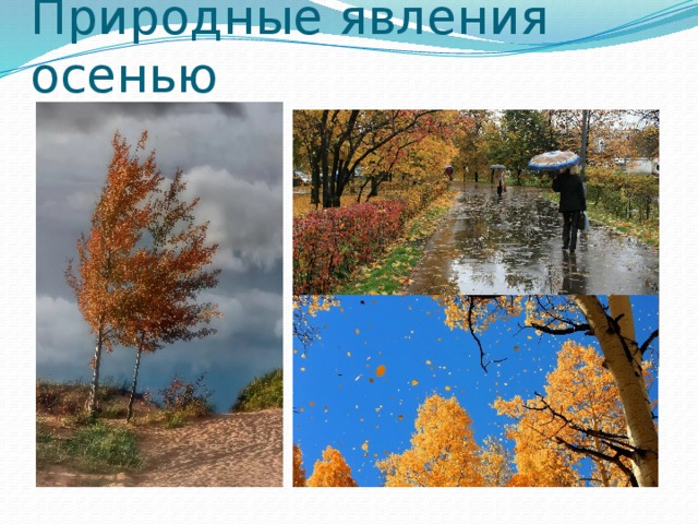 Картинки по запросу Явления природы осенью