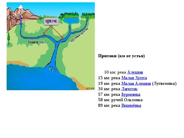 Притоки (км от устья) 10 км: река Алешня 15 км: река Малая Хупта 19 км: река Малая Алешня (Лупиловка) 34 км: река Лапоток 57 км: река Бурминка 58 км: ручей Ольховка 89 км: река Вишнёвка