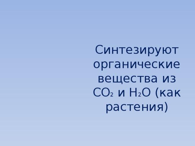 Синтезируют органические вещества из CO 2 и H 2 O (как растения)
