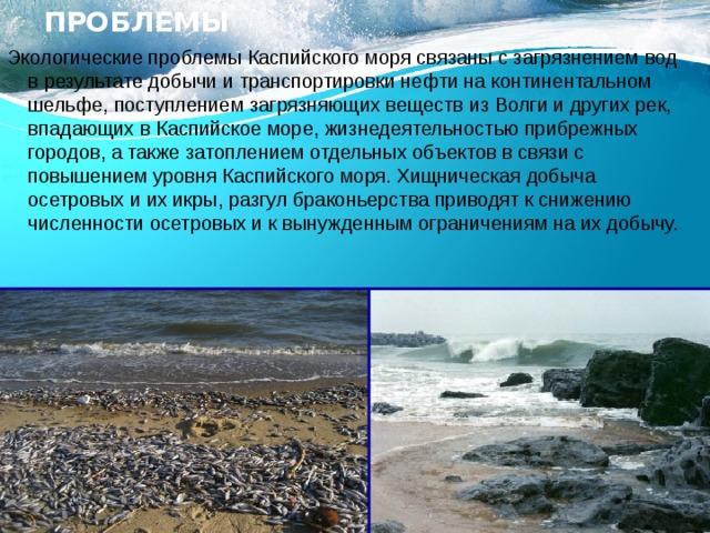 Экологические проблемы Экологические проблемы Каспийского моря связаны с загрязнением вод в результате добычи и транспортировки нефти на континентальном шельфе, поступлением загрязняющих веществ из Волги и других рек, впадающих в Каспийское море, жизнедеятельностью прибрежных городов, а также затоплением отдельных объектов в связи с повышением уровня Каспийского моря. Хищническая добыча осетровых и их икры, разгул браконьерства приводят к снижению численности осетровых и к вынужденным ограничениям на их добычу.